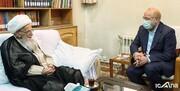رئیس مجلس با آیتالله العظمی صافی دیدار کرد