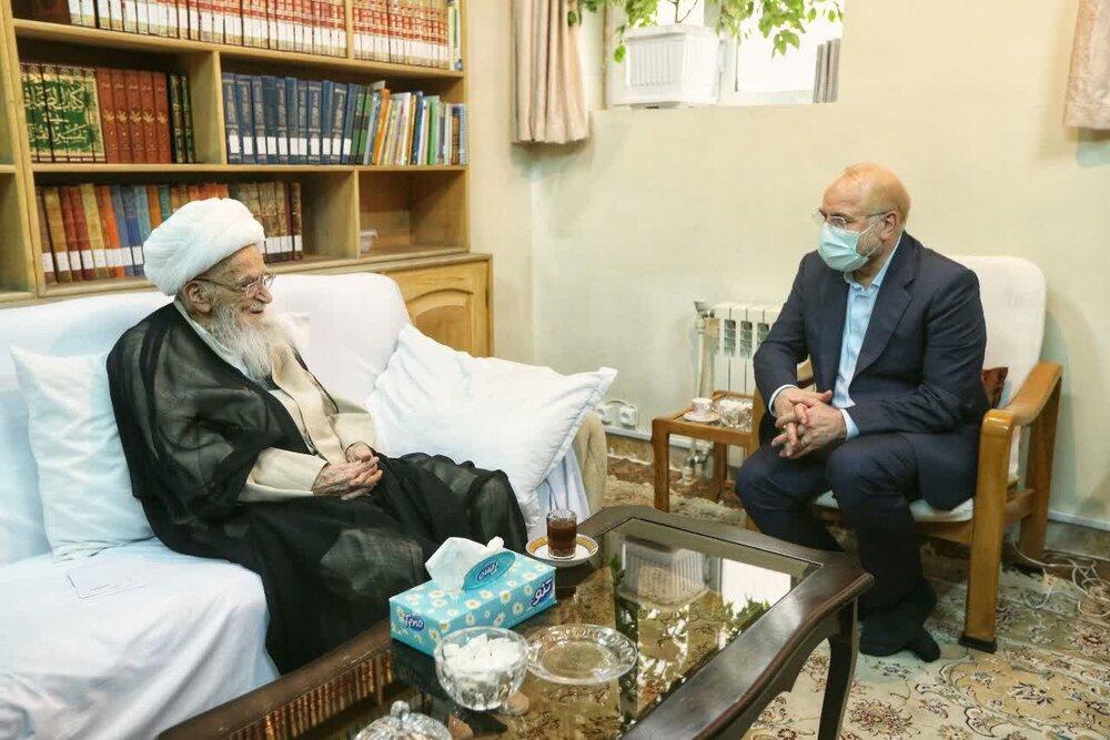 عکس / دیدار رئیس مجلس شورای اسلامی با آیت الله العظمی صافی