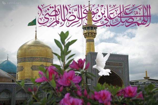 الإمام علي بن موسى الرضا (ع)