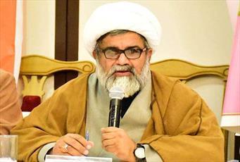 پاکستان میں بسنے والے تمام طبقات کو آئین کی رو سے برابری کے حقوق اور مذہبی آزادی حاصل ہے، علامہ ناصر عباس جعفری