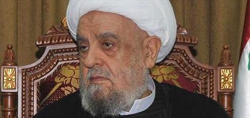 الشيخ قبلان يدعو حكام العرب الى نصرة فلسطين واليمن