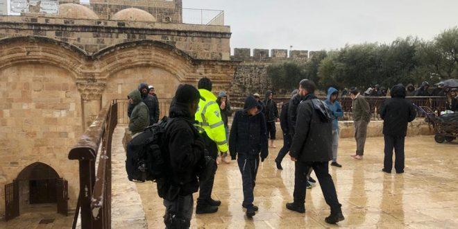 ۱۵۰ settlers enter Al-Aqsa mosque yards amid tensions