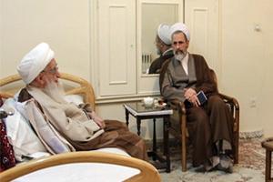 آيت الله العظمي صافي در دیدار مدیر حوزه های علمیه