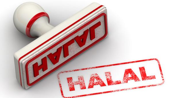 همایش بین المللی «حفظ اکوسیستم حلال جهانی» در مالدیوز برگزار می شود