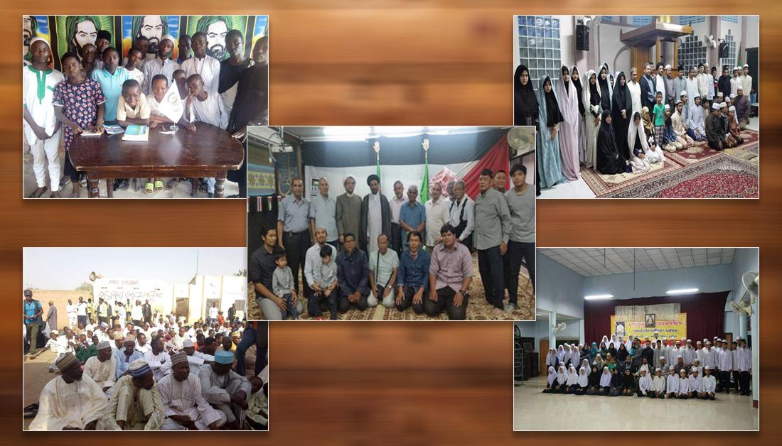 فعالیت های فرهنگی آستان مقدس حسینی به کشور های آفریقایی، هند و ترکیه رسید
