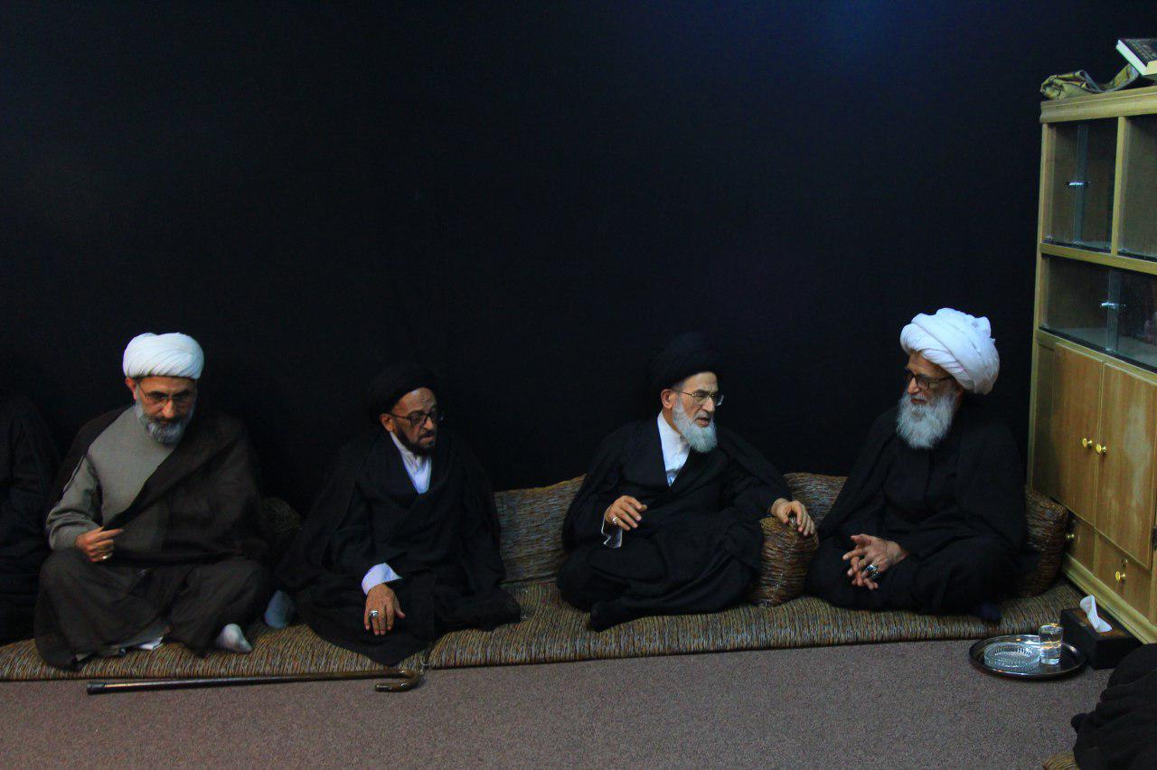 آیت الله العظمی بشیر نجفی و آیت الله سید محمد علی شیرازی