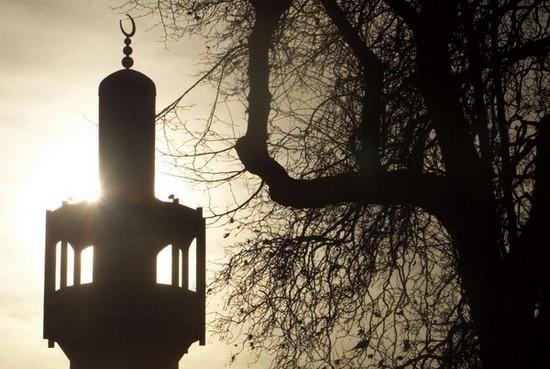 تشکیل صندوق حمایت مالی از مسلمانان
