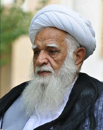 آیت الله محسنی از علمای افغانستان