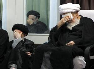 دیدار آیات عظام صافی گلپایگانی و شبیری زنجانی +تصاویر