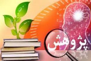 پژوهش محوری لازمه پویایی نظام آموزشی حوزه است