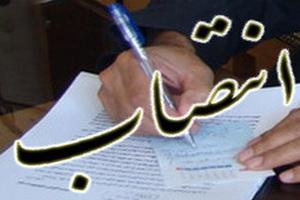 انتصاب مدیر گروه مطالعات خانواده پژوهشگاه علوم و فرهنگ اسلامی دفتر تبلیغات اسلامی