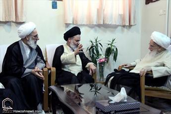 تصاویر/ دیدار مدیر حوزههای علمیه با آیت الله العظمی صافی