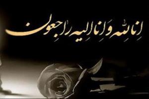 رئیس مرکز خدمات حوزه  ارتحال آیتالله  طباطبائی قمی را تسلیت گفت