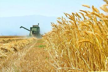 جلد پنجم دانشنامه کشاورزی، منابع طبیعی و محیط زیست تدوین می شود