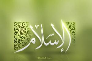 هرچه توان دارید، آن را برای اسلام صرف کنید و بس