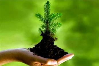 در سبک زندگی اسلامی  انسان در برابر محیط زیست مسئول است