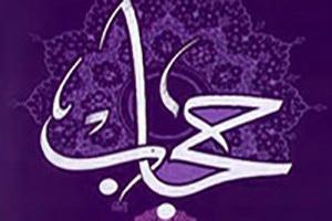 حجاب آیینه تمام نمای اقتدا به حضرت زهرا(س) است