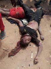 گذاشتن سلاح در دست شهدای نیجریه و عکسبرداری از آنان/ جدا کردن نوزادان از مادرانشان