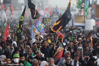 تصاویر/ زائران طریق الحسین در مسیر نجف تا کربلا