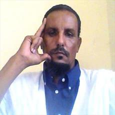 کارشناس موریتانیایی: مالیات بر گوشت خوک  بودجه کشور را نجس میکند