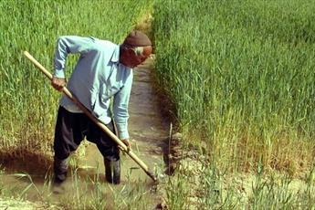 کشاورزان در کجای اقتصاد مقاومتی قرار دارند؟