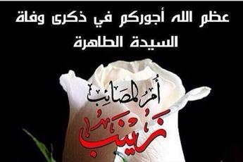 حضرت زینب (س)الگوی زنان و مردان در دفاع از ولایت  هستند