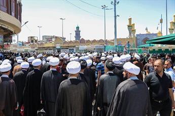 فعالیت تبلیغی طلاب نجف در شهادت امام کاظم(ع) + عکس
