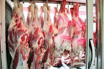 خاورمیانه مقصد جدید گوشت مکزیک به جای آمریکا