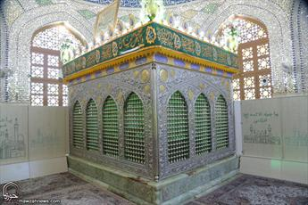 تصاویر/ مراسم غبار روبی امامزاده موسی مبرقع(ع)