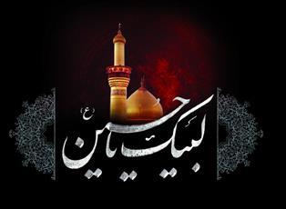 چرا امام حسین علیه السلام خودش را در مخاطره انداخت؟!