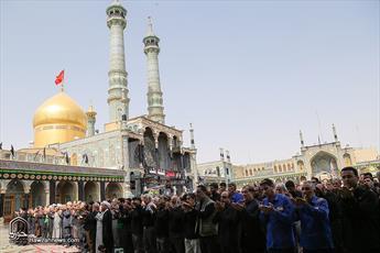 تصاویر/ اقامه نماز ظهر عاشورا در حرم حضرت معصومه(س)-۱