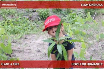 درختکاری جوانان کمپین «حسین کیست؟» در کنگو + تصاویر
