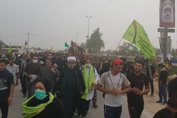 عکس/ حضور رئیس مرکز اسلامی هامبورگ در راهپیمایی اربعین