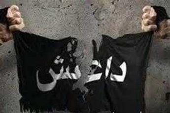 آیت الله طبرسی: با هدایت های رهبری  جبهه مقاومت طومار داعش را در هم پیچید