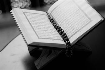 استاد حوزه: نباید به بهانه های مختلف به مقدسات دیگران توهین کرد