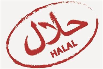 مالزی «چارچوب اقتصادی اسلام دیجیتال» راه اندازی می کند