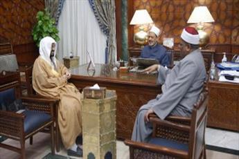 مدیر شهرک تاریخی پیامبر(ص) با شیخ الازهر دیدار کرد