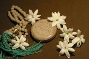 نماز جماعت و برنامه های فرهنگی در ۱۰ بوستان قم برگزار می شود