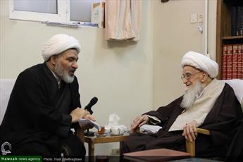 دیدار مدیر جدید حوزه علمیه خواهران با آیت الله العظمی صافی+ عکس