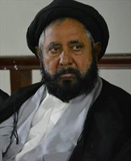 کمیته ویژه حل مشکلات زائران پاکستانی عتبات مقدس ایران و عراق تشکیل شد