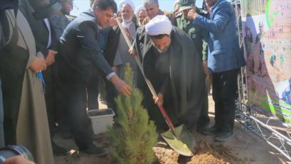 آیین درختکاری با حضور روحانیت کرمانی برگزار شد