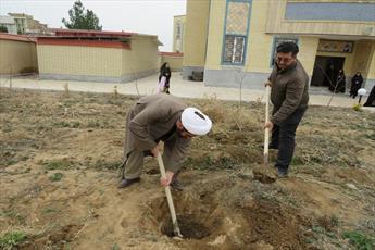 کاشت نهال به یاد شهید مدافع حرم در مدرسه  فاطمیه قزوین+ عکس