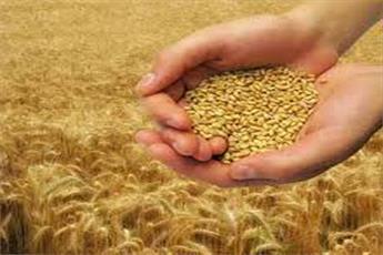 افزایش ۱۶ درصدی جمعآوری زکات در خراسان شمالی