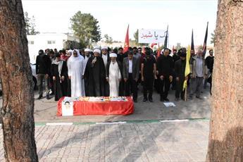 تصاویر/ مراسم تشییع شهید حسن البحرانی از شهدای بحرین در بهشت معصومه قم