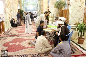 فعالیت ۲۰ میلغ دینی در حرم حضرت علی(ع)