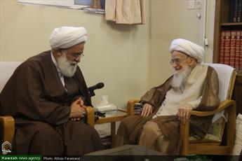 تصاویر/ دیدار اعضای شورای حوزه علمیه تهران با آیات عظام صافی و نوری همدانی
