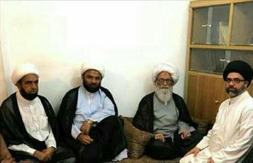 گروهی از شیعیان و علمای پاکستان با آیت الله العظمی بشیر نجفی دیدار کردند