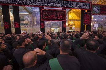 عزاداری مولای متقیان(ع) در حرم امام حسین و حضرت عباس (علیهما السلام) +تصاویر