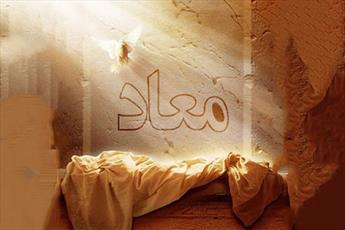 ۱۴۰۰ آیه قرآن درباره کدام یک از اصول دین بیان شده است؟