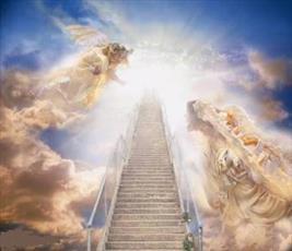 با گواهان روز قیامت بیشتر آشنا شویم